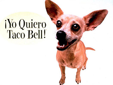01commercial-animals-taco-bell1.jpg