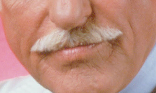 mustaches-closeup-01.jpg