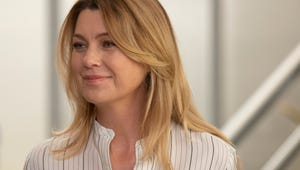Meredith's New Love Interest on Grey's Anatomy Looks a Lot Like Ted Mosby