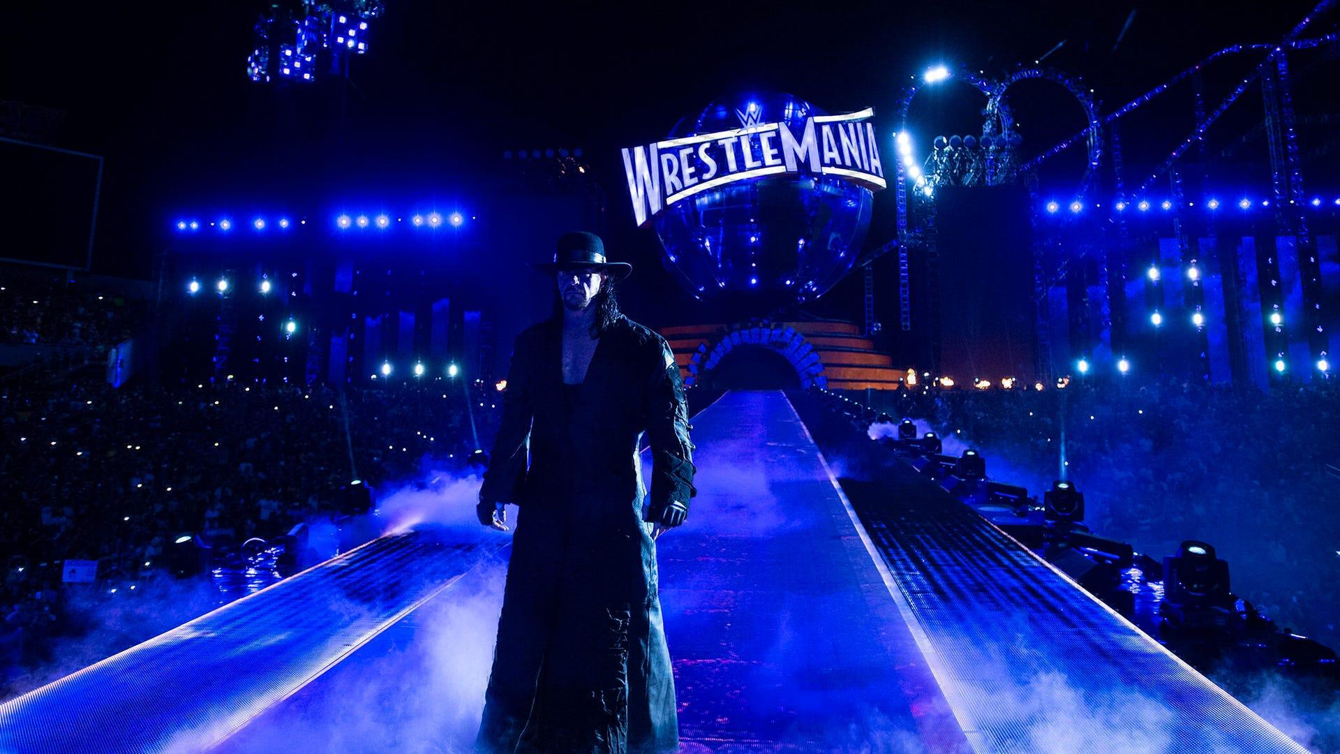 The Undertaker, WrestleMania 33
