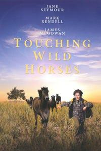 Touching Wild Horses as Fiona