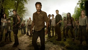 Everything You Need to Know About The Walking Dead