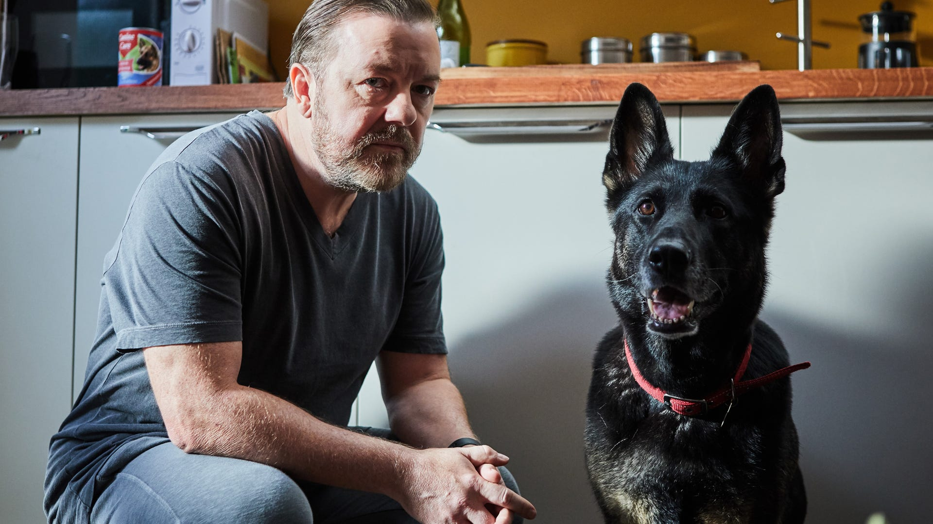 Ricky Gervais, Dog; After Life