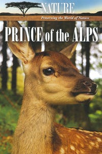 Prince of the Alps as Narrator