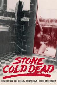 Stone Cold Dead as Sgt. Tony Colabre
