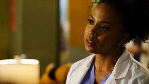 Grey's Anatomy: Stephanie and Alex Put Their Careers on the Line