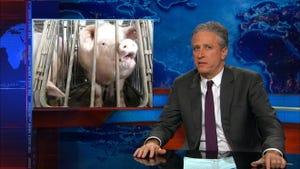The Daily Show With Jon Stewart, Season 20 Episode 27 image
