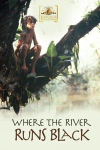 Where the River Runs Black as Sister Ana