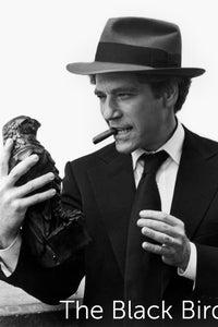 The Black Bird as Sam Spade Jr.