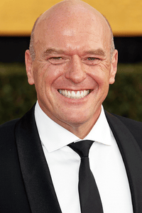 Dean Norris as Don Timmons