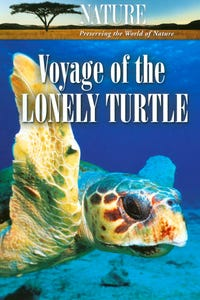 Nature: Voyage of the Lonely Turtle as Narrator