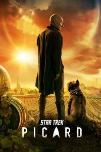 Star Trek: Picard as Narek