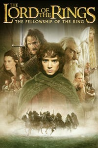 The Lord of the Rings: The Fellowship of the Ring as Frodo Baggins