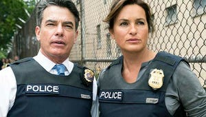 Law & Order: SVU's Peter Gallagher Is Busier Than Ever --- and That's Just How He Likes It