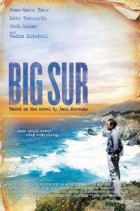 Big Sur as Michael McClure