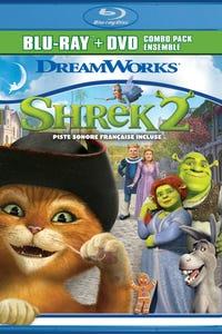 Shrek 2 as Fairy Godmother
