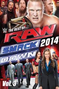WWE: Best of Raw & Smackdown 2014 Vol. 3