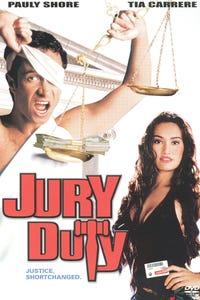 Jury Duty as Judge Swartz