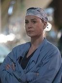 Grey's Anatomy, Season 13 Episode 24 image