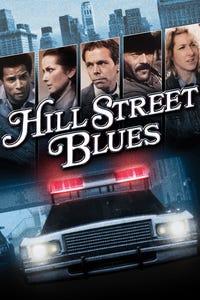 Hill Street Blues as Wachtel