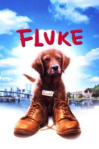 Fluke as Voice of Rumbo
