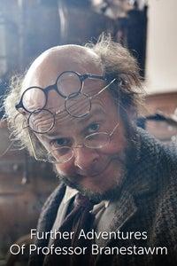 Further Adventures Of Professor Branestawm