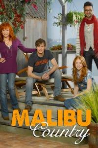 Malibu Country as Bartender