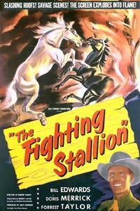 The Fighting Stallion as Chuck