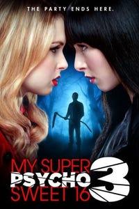 My Super Psycho Sweet 16: Part 3 as Brigg
