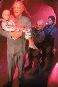 Eric Pierpoint as Bruce Curran