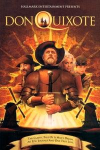 Don Quixote as Don Quixote