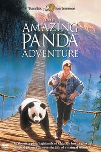 The Amazing Panda Adventure as Michael
