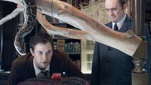 TNT Orders The Librarians Series Starring Rebecca Romijn