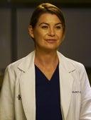 Grey's Anatomy, Season 13 Episode 23 image