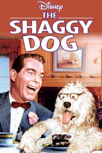 The Shaggy Dog as Officer Kelly
