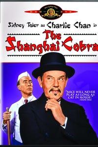 The Shanghai Cobra as Ned Stewart