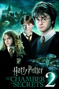 Harry Potter and the Chamber of Secrets as Prof. McGonagal