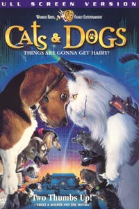 Cats & Dogs as Calico