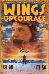 Wings of Courage as Henri Guillaumet