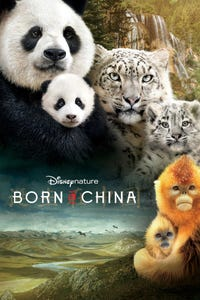 Born in China as le narrateur