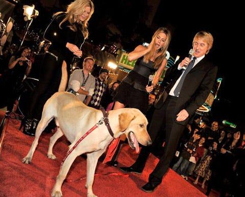 "Jennifer Aniston, Owen Wilson and Clyde - ""Marley & Me"" premiere, Westwood, California, December 11, 2008"