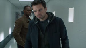 Marvel's The Falcon and The Winter Soldier Premiere Officially Delayed