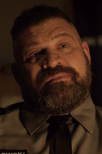 Brad William Henke as Roy