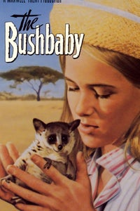 The Bushbaby as The Hadj