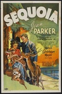 Sequoia as Mathew Martin