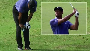 Tiger Woods Throws Up During Golf Tournament
