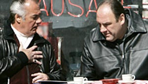Sopranos to the Silver Screen? Experts Share Their Takes