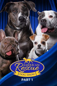 2020 American Rescue Dog Show (Part 1)