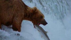 The National Parks: America's Best Idea, Season 1 Episode 6 image