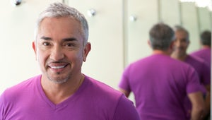 How Similar Are Dogs and Humans? A Surprisingly Philosophical One-On-One with Cesar Millan